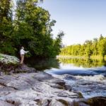 Minnesota Land Trust's Northern Region Director Pat Collins on the banks of the Bigfork River in Bigfork, MN. Courtesy of accredited Minnesota Land Trust/Hansi Johnson, photographer.